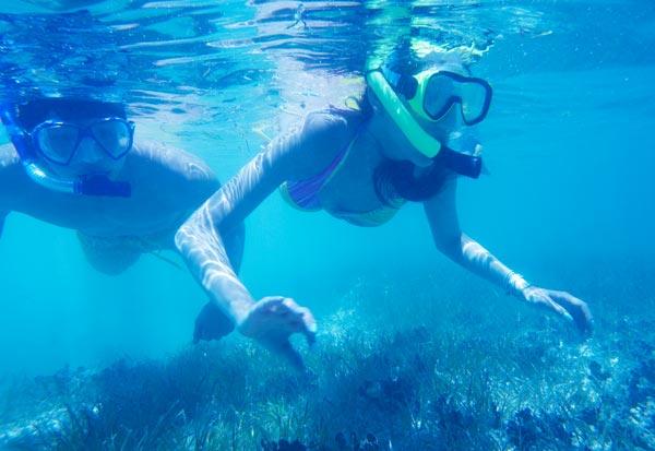 太平洋海岛俱乐部-塞班岛Yelp